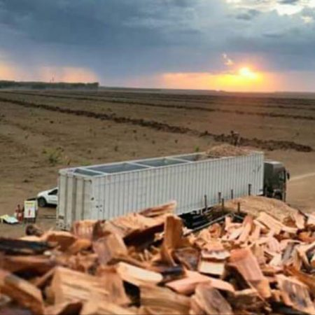 Produção e Comércio de Biomassa