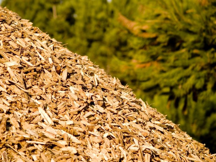 Produção de biomassa com resíduos de madeira vira alternativa em MT